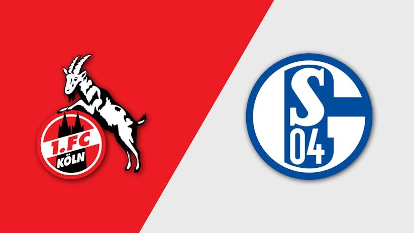 Sporttotal 1 Fc Koln U21 Vs Fc Schalke 04 U23 2 Live Und
